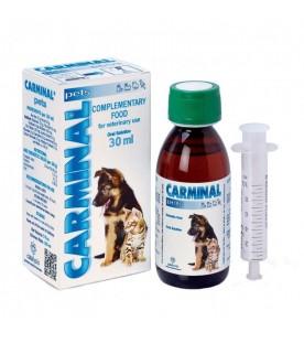 carminal-pentru-tulburari-gastrice-caini-si-pisici