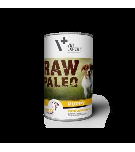 raw-paleo-puppy-hrana-monoproteica-pentru-caini-juniori-carne-de-curcan
