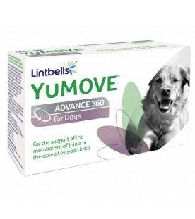 Yumove-Advance-360-supliment-nutritiv-caini